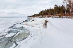 冬天在河的冰风景 鄂毕河,西伯利亚 库存图片