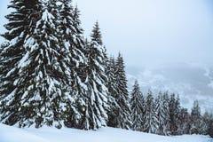 冬天在法国阿尔卑斯 免版税图库摄影
