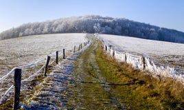 冬天在波希米亚 免版税库存照片