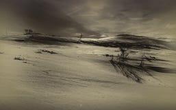 冬天在泰勒马克郡,挪威 免版税图库摄影