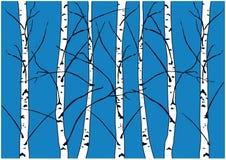 冬天在深蓝背景隔绝的赤裸桦树的传染媒介例证 皇族释放例证