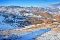 冬天在特兰西瓦尼亚罗马尼亚 免版税图库摄影