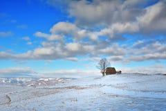 冬天在特兰西瓦尼亚罗马尼亚 库存照片
