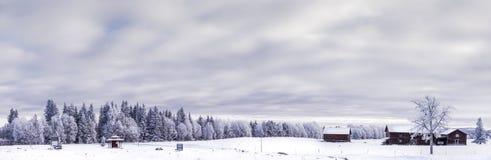 冬天在瑞典 库存图片