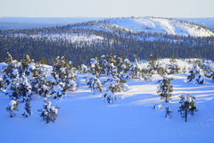 冬天在芬兰。 免版税图库摄影