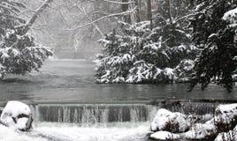 冬天在英国庭院,慕尼黑里 免版税库存图片