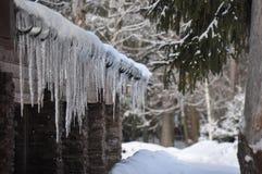 冬天在莫斯科地区 免版税库存照片