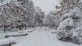 冬天在蒙大拿01 免版税库存照片