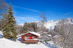 冬天在阿尔卑斯 免版税库存图片