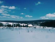 冬天在Garrett学院 库存照片