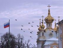 冬天在Petershof (圣彼德堡)在俄罗斯 免版税库存图片