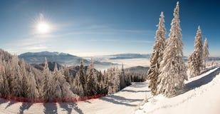 冬天在Postavaru 库存照片