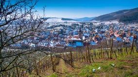 冬天在Riquewihr在阿尔萨斯 免版税库存图片