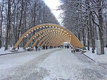 冬天在Sokolniki公园,莫斯科 免版税图库摄影