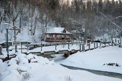 冬天在Svyatogorye 免版税图库摄影