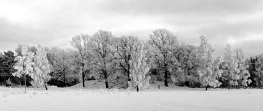 冬天在Vänersborg 库存图片