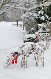 冬天场面在雪的圣诞节驯鹿 库存图片