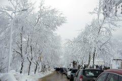 冬天场面在Golcuk 免版税图库摄影