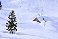 冬天场面斯诺伊风景沃热尔 库存图片