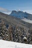 冬天场面,白云岩,意大利 库存图片