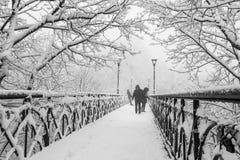 冬天城市公园在早晨 免版税库存图片