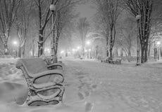 冬天城市公园在晚上 免版税库存照片