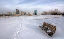 冬天城市地平线 库存照片