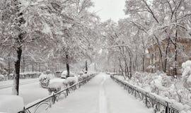 冬天城市风景 城市克里姆林宫横向晚上被反射的河 免版税库存照片