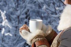 冬天外套的少妇和被编织的灰色手套拿着beautif 免版税库存照片