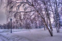 冬天多雪的城市公园胡同 包括的雪结构树 冬天有偏僻的灯笼的季节公园 免版税库存图片