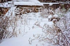冬天多雪的庭院视图 免版税库存图片