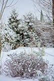 冬天多雪的庭院视图 免版税图库摄影