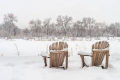冬天多雪的风景在蒙特利尔 免版税库存照片