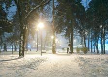 冬天夜公园场面 库存图片