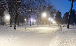冬天夜公园场面 库存照片