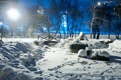 冬天夜公园场面 免版税库存照片