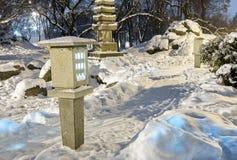 冬天夜公园场面 免版税库存图片