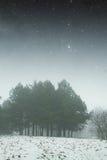 冬天夜在公园 NA装备的这个图象的元素 免版税库存图片