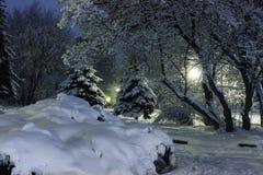 冬天夜照片 免版税图库摄影