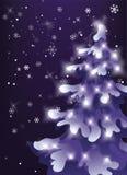 冬天夜空 雪落 Showfall 与假日光的杉木多雪的树 免版税库存图片