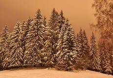 冬天夜视图风景 免版税库存照片