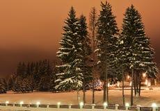 冬天夜视图风景 库存图片