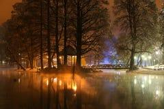 冬天夜间在公园 库存照片