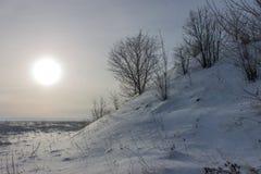 冬天太阳和积雪的小山与树 库存照片