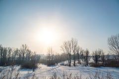 冬天太阳在森林上的冷淡的天空中 库存图片