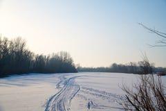 冬天太阳在森林上的冷淡的天空中 免版税库存图片