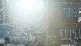 冬天太阳在老校园发光 股票视频
