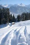 冬天太阳天风景 库存图片