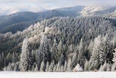 冬天太阳风景在山森林里 图库摄影