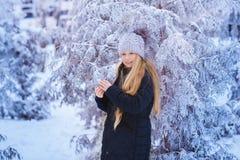 冬天女孩吹的雪 秀丽快乐的少年式样女孩获得乐趣在冬天公园 笑美丽的女孩户外 享受n 库存照片